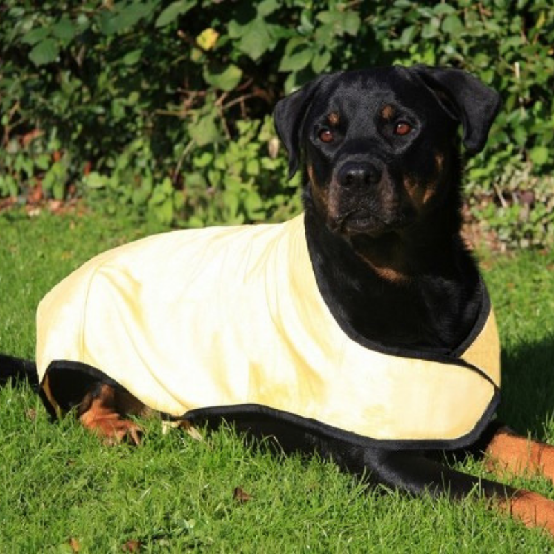 "Prestige ""Cool Dog"" Cooling Coat Large"