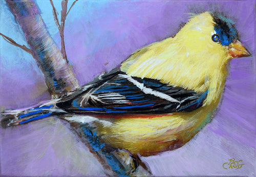 Alluring Goldfinch original painting by Pat Cross.