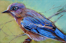 Load image into Gallery viewer, Backyard Bluebird painting by Pat Cross