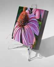 Load image into Gallery viewer, Courting Cone Flower painting on clear acrylic easel