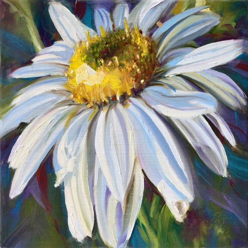 Crisp White Daisy 6x6 oil painting by Pat Cross