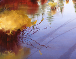Detail of Fall River original oil painting by Pat Cross