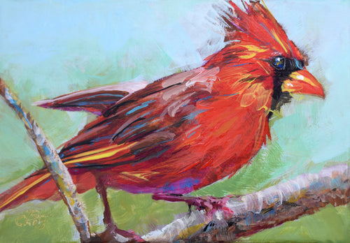 Forest Ruby Cardinal original painting by Pat Cross.