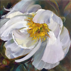 Peony White Delight 8x8 original oil painting by Pat Cross.