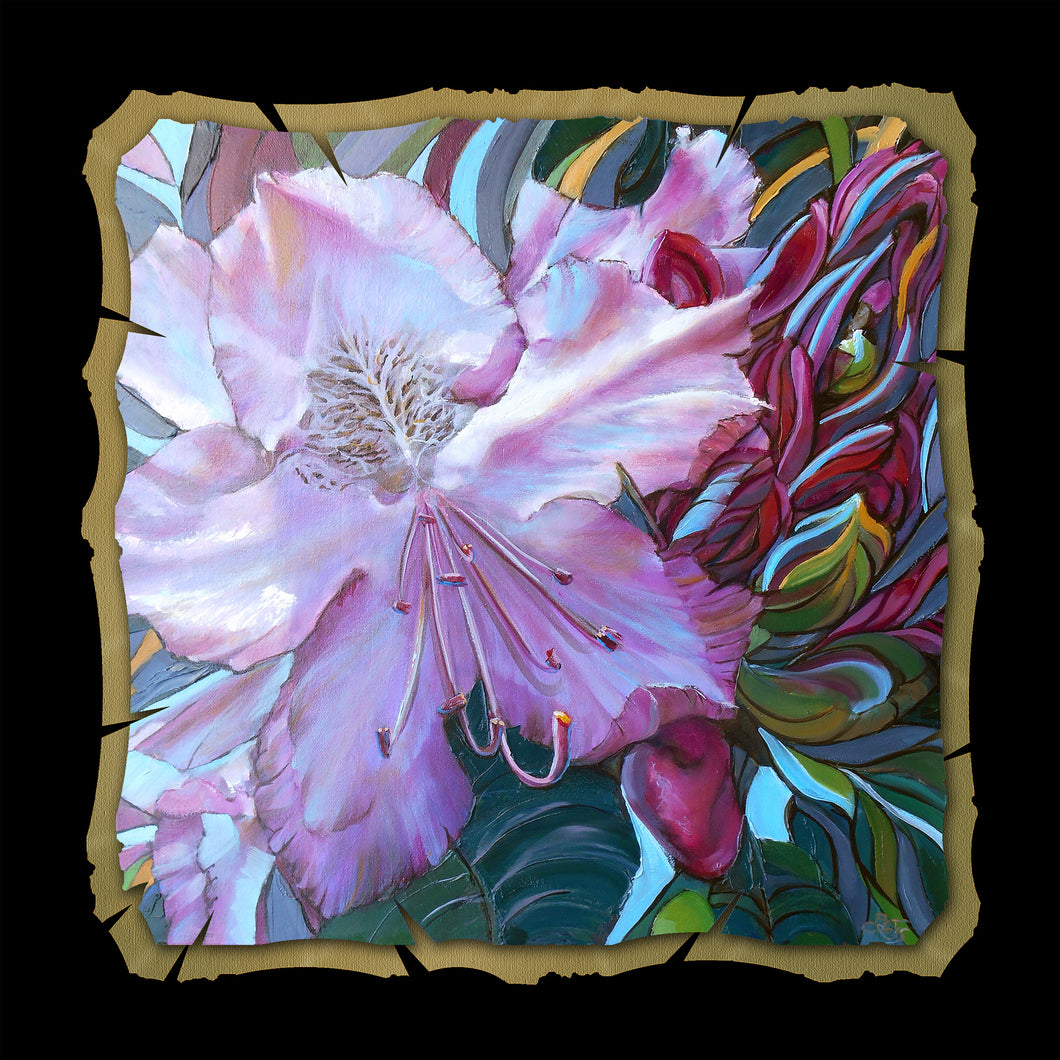 Rhodie Bud to Bloom 10x10 Print