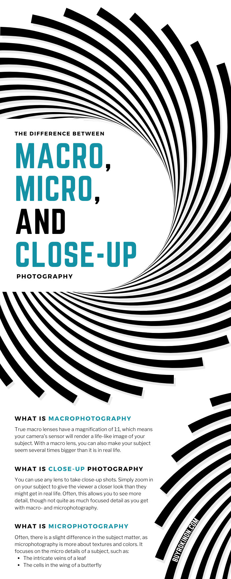 The Difference Between Macro, Micro, and Close-up Photography