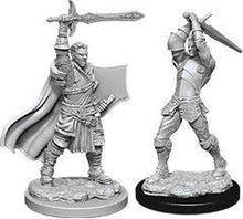 Load image into Gallery viewer, D&D Nolzur's Marvelous Miniatures: Male Human Paladin - Wave 12 Unpainted (WZK90060)