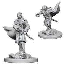 Load image into Gallery viewer, D&D Nolzur's Marvelous Miniatures - Vampires - Unpainted (WZK72565)