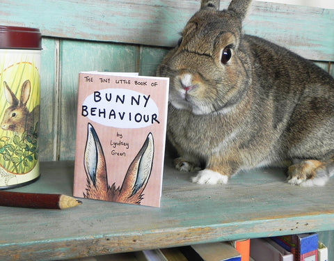 Bunny Behaviour Zine - by Lyndsey Green