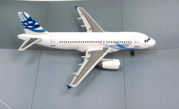 Airbus A319 Corporate Jetliner 1/400 Diecast Model DRW55682