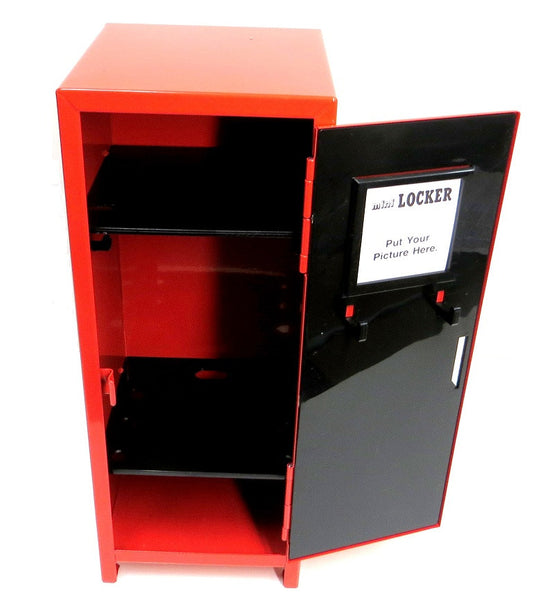 Mini Storage Locker Organizer