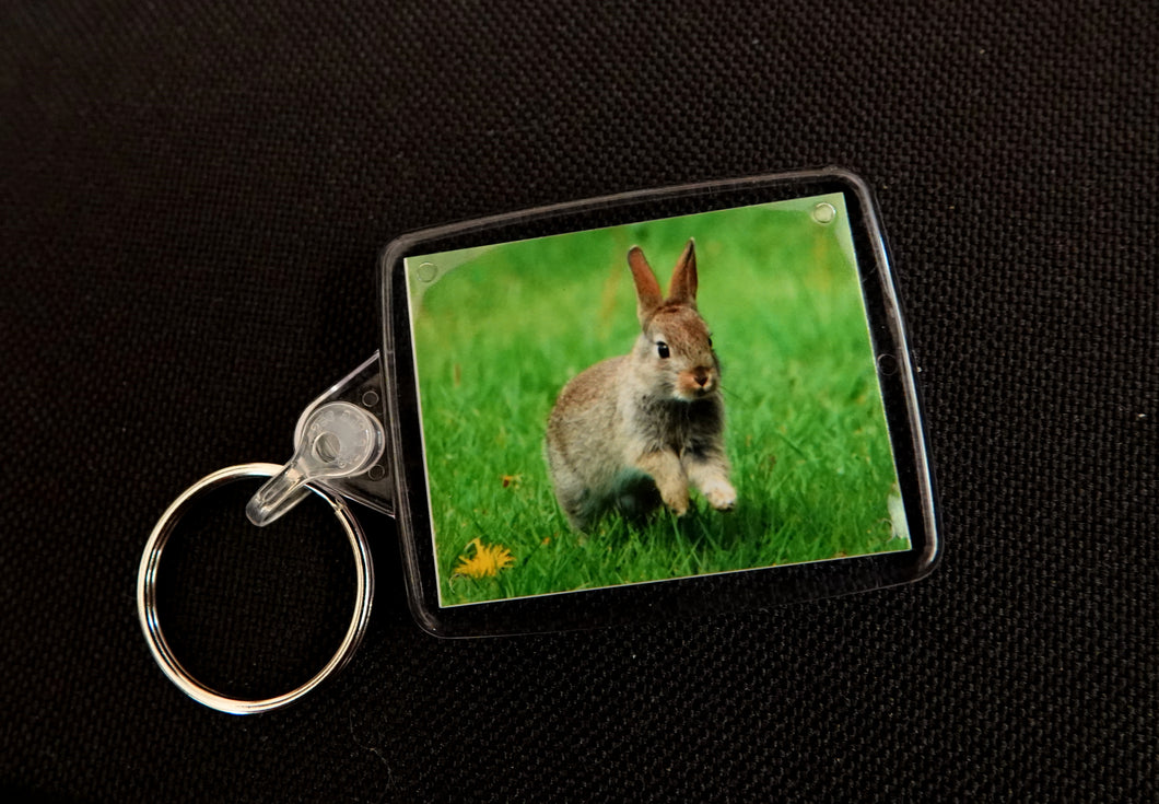 Rabbit Keyring 2