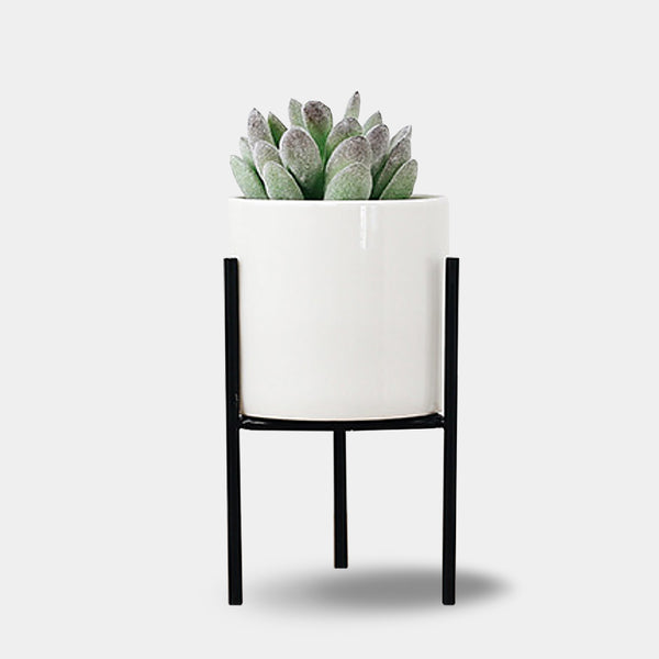 Metal and ceramic planters