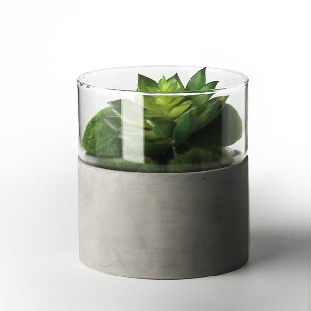 Modern concrete and glass planter vases