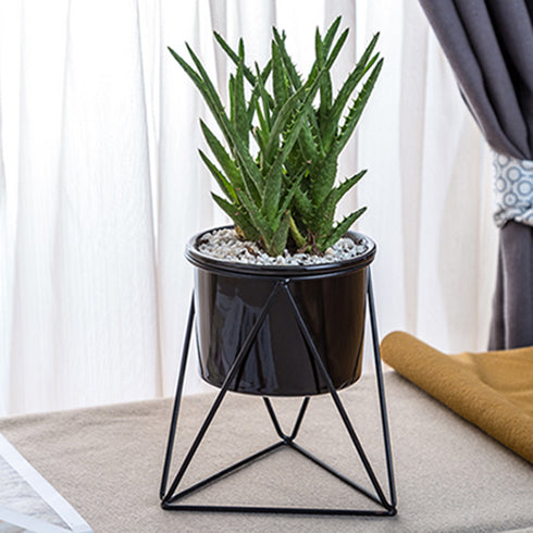 Metal planter with black ceramic plant pot