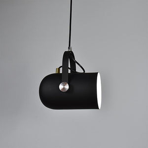 Modern ceiling spot pendant light
