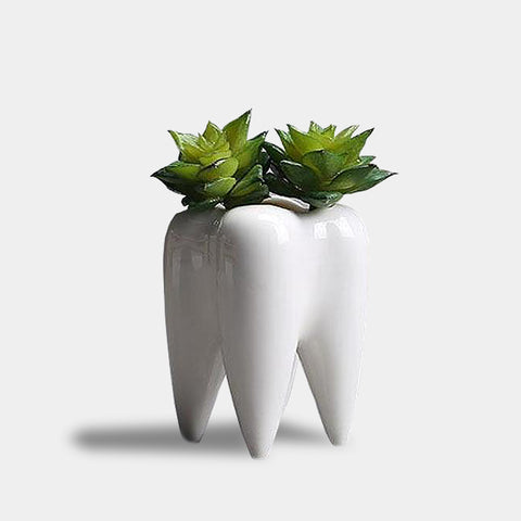 Tooth ceramic planter