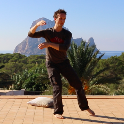 NEW! Tai Chi Beginners Routine with Mike : 30 Minutes : December 2016