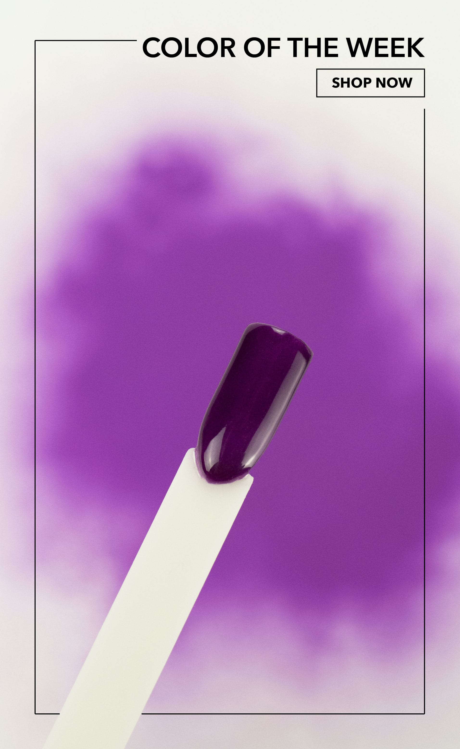 Swatch photo of Elderberry, deep plum purple dip powder, Revel Nail