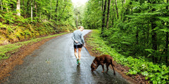 Dog and woman walking on a path in the rain