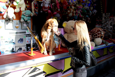 dog at fair with woman in front of toys