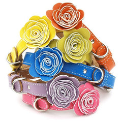 colorful luxury leather dog collars with flowers