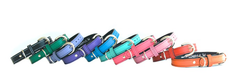 colorful leather luxury dog collars
