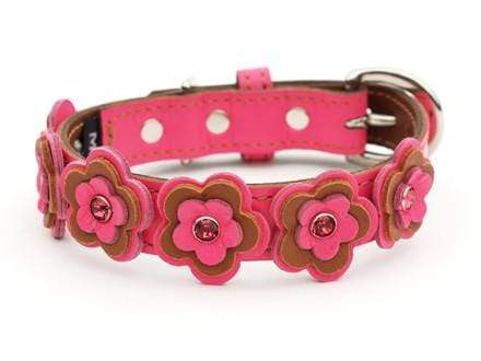 Cosmic Daisy LuxeMutt Pink Leather Dog Collar - LuxeMutt