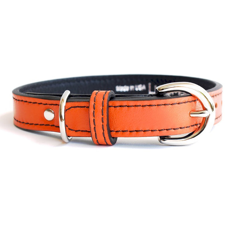 Minimalist California Tangerine Leather Dog Collar - LuxeMutt