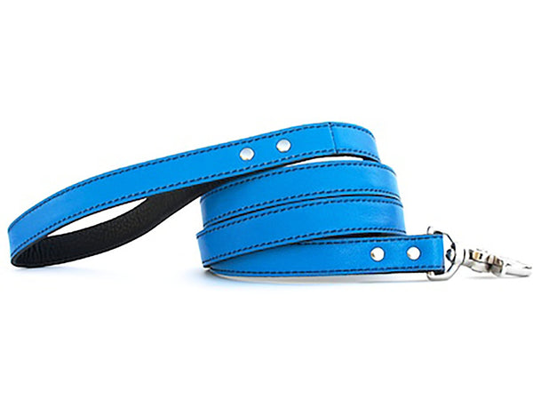 Minimalist Peacock Blue Leather Dog Leash - LuxeMutt