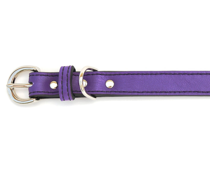 Minimalist Purplicious Leather Dog Collar - LuxeMutt