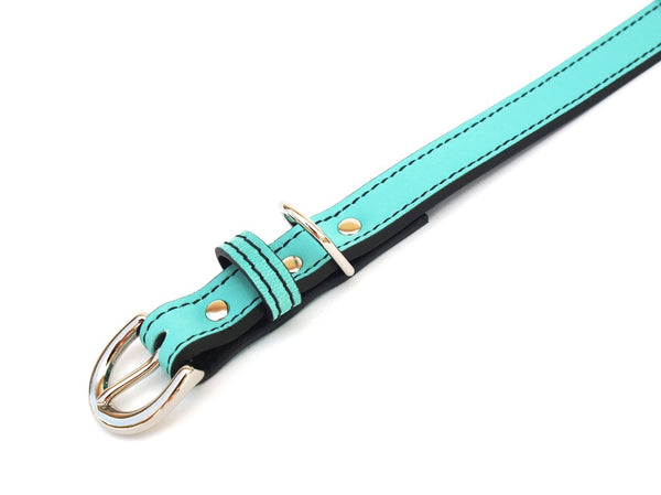 Minimalist Seafoam Green Leather Dog Collar - LuxeMutt