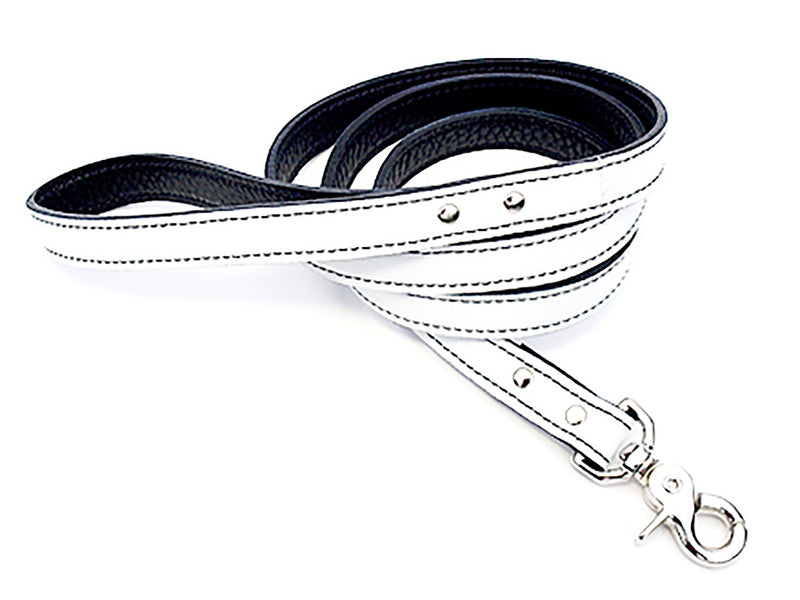 Minimalist White Peppermint Leather Dog Leash - LuxeMutt