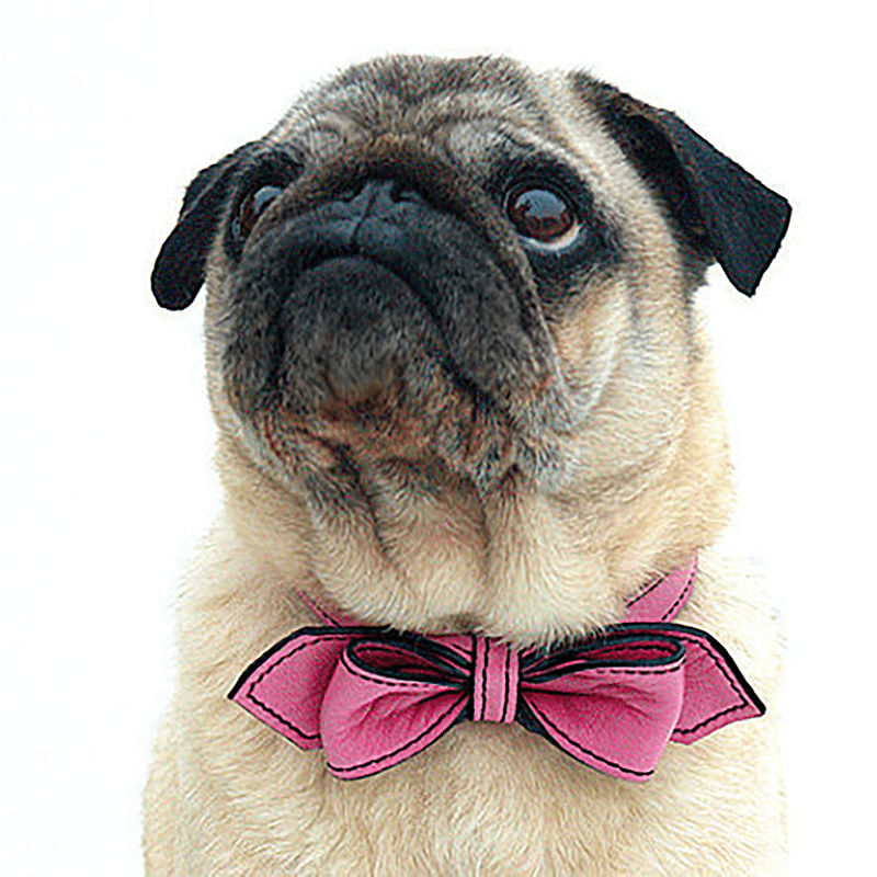 Poodle Pink Martini Bowtie Leather Dog Collar - LuxeMutt