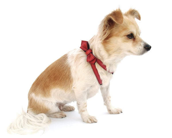 Renegade Red Bowtie Leather Dog Harness - LuxeMutt