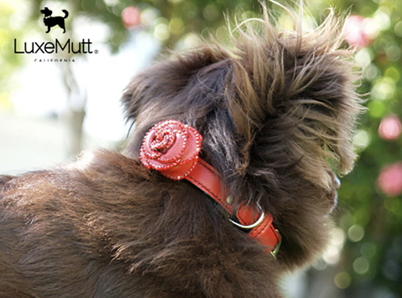 Renegade Red Rosalicious Leather Dog Collar - LuxeMutt