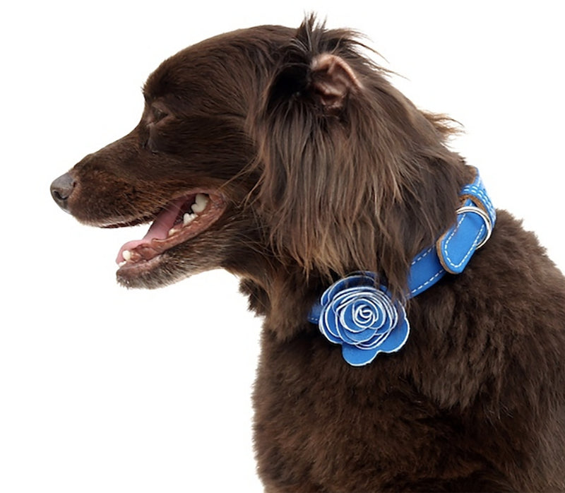 The Flower Child Blue Bliss Leather Dog Collar