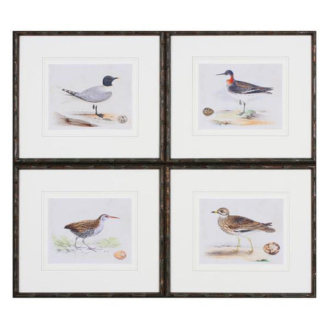 Birds Set of Four