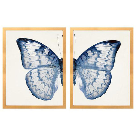 Split Blue Butterfly B