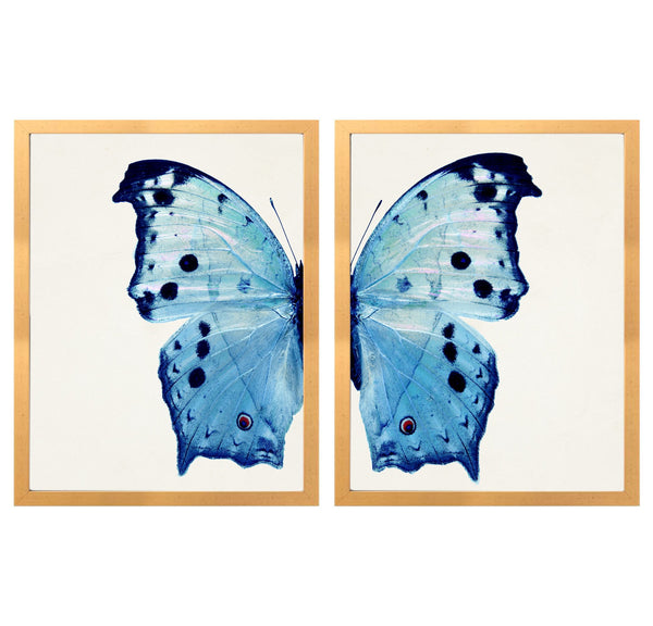 d blue butterfly dyptych