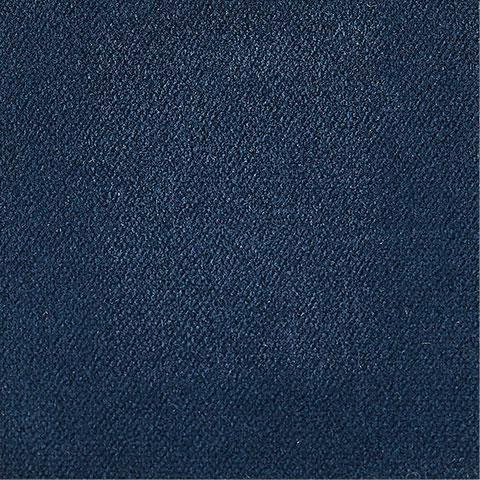 Blueberry Fabric Swatch