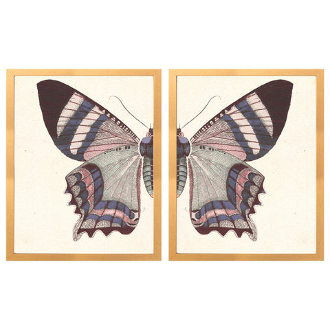 Vintage Blush Butterfly Diptych
