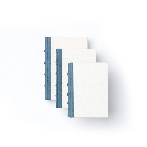 blue parchment decorative books