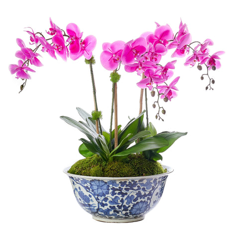Petite Triple Fuchsia Orchid Traditional Floral Bowl