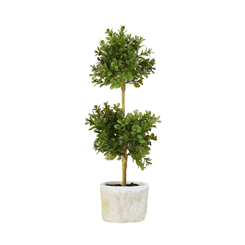 Double Boxwood Topiary Set