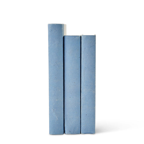 French Blue Parchment Decorative Books