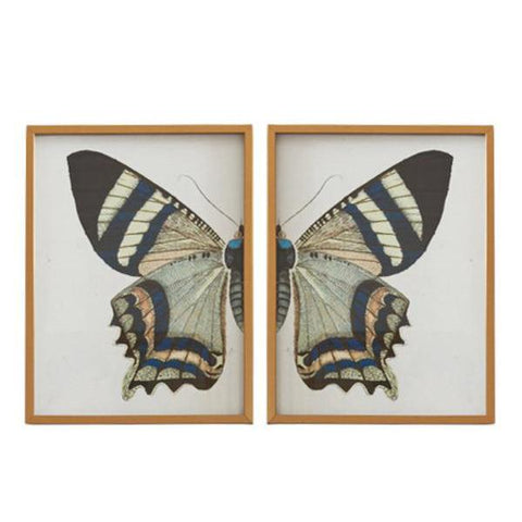 Split Butterfly Prints