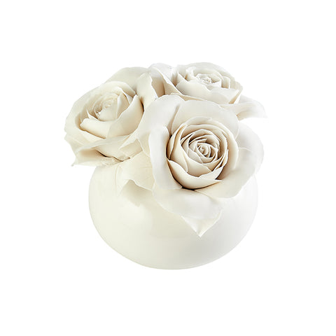 Porcelain Blooming Roses