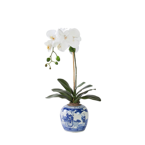 Single White Orchid in Chinoise Vase