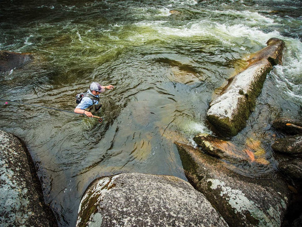 Why Pocket Water is the Coolest Spot to Catch Summer Trout
